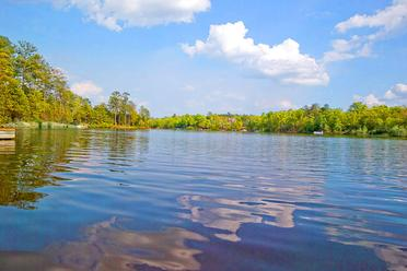 Lake Carolina Homes for Sale & Real Estate